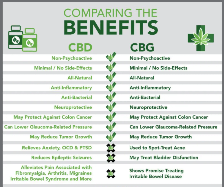 cbg a cbd - różnice między nimi